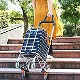 Arkmiido Faltbarer Einkaufswagen Tragbarer Einkaufstrolley Lebensmittellieferant Leichter Treppensteigewagen mit drehbaren Rollen und Abnehmbarer Wasserdichter Tasche aus Canvas